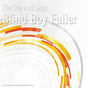 The One and Only: Blind Boy Fuller