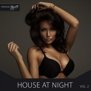 House At Night, Vol. 2