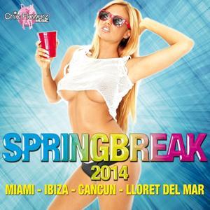 Springbreak 2014 (Miami - Ibiza - Cancun - Lloret del Mar)