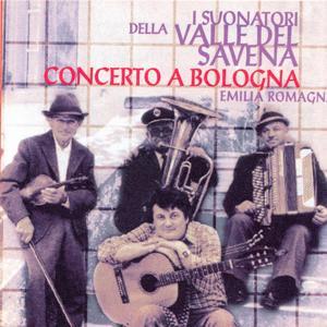 Emilia Romagna: Concerto a Bologna