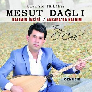 Ey Çek / Dalımın İnciri (Ankarada Kaldım)