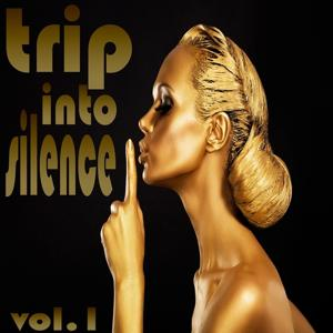 Trip Into Silence, Vol. 1 (A Voyage Into Chill Out and Lounge)
