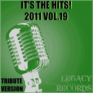 It's the Hits 2011, Vol. 19