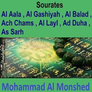 Sourates Al Aala, Al Gashiyah, Al Balad, Ach Chams, Al Layl, Ad Duha, As Sarh (Quran - Coran - Islam)