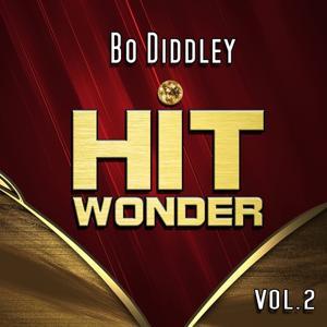 Hit Wonder: Bo Diddley, Vol. 2
