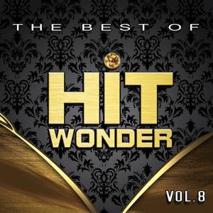 Hit Wonder: The Best Of, Vol. 8