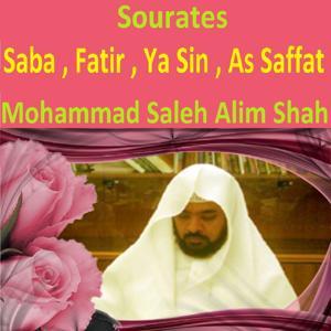Sourates Saba, Fatir, Ya Sin, As Saffat (Quran - Coran - Islam)
