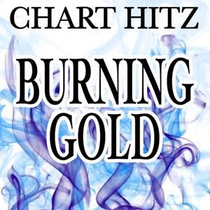 Burning Gold - Tribute to Christina Perri