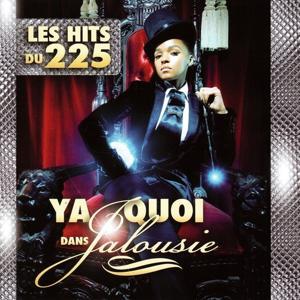 Ya quoi dans jalousie (Les hits du 225)