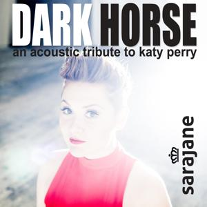 Dark Horse (An Acoustic Tribute to Katy Perry)