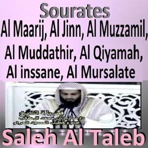 Sourates Al Maarij, Al Jinn, Al Muzzamil, Al Muddathir, Al Qiyamah, Al Inssane, Al Mursalate (Quran - Coran - Islam)