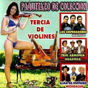 Tercia De Violines