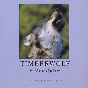 Timberwolf In Tall Pines