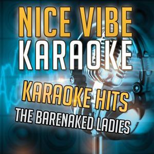 Karaoke Hits - The Barenaked Ladies