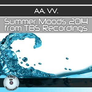 Summer Moods 2014 from TBS Recordings