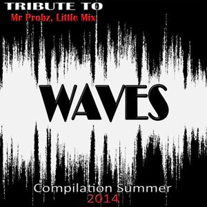 Waves: Tribute to Mr. Probz, Little Mix