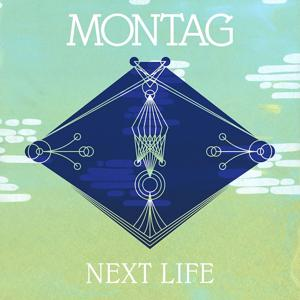 Next Life b/w Trip The Light Fantastic (Memory Tapes Remix)