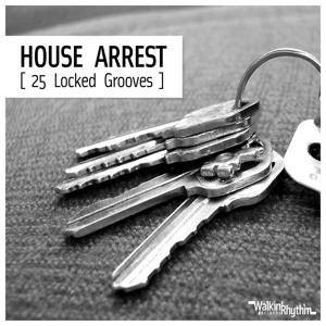 House Arrest (25 Locked Grooves)