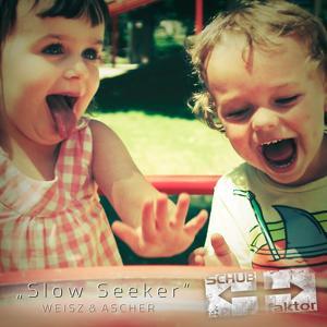 Slow Seeker