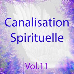 Canalisation spirituelle, vol. 11