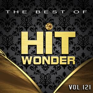 Hit Wonder: The Best of, Vol. 121