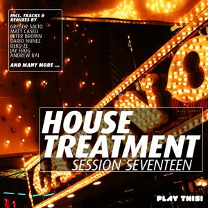 House Treatment - Session Seventeen