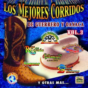 Los Mejores Corridos de Guerreo y Oaxaca, Vol. 3