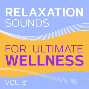 Relaxation (Sounds for Ultimate Wellness, Vol. 2)