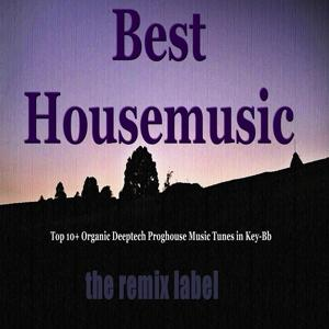 Best Housemusic (Top 10+ Organic Deeptech Proghouse Music Tunes in Key-Bb from Balearic Ibiza to Hot Miami Beach Tunes Album Compilation and the Paduraru Megamix)