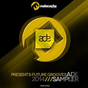 Ade Sampler 2014 (Present and Future Grooves)