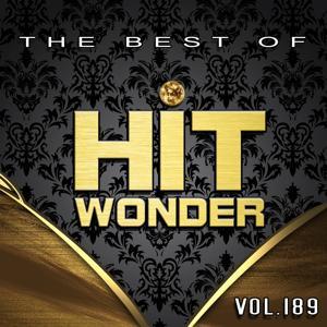 Hit Wonder: The Best of, Vol. 189
