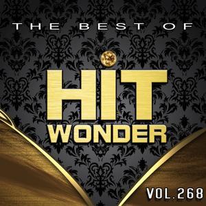Hit Wonder: The Best of, Vol. 268