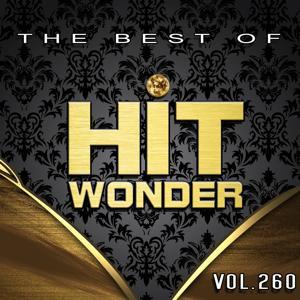 Hit Wonder: The Best of, Vol. 260
