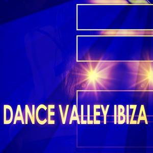 Dance Valley Ibiza (90 Best Songs House Electro Party & Festival DJ Kits)