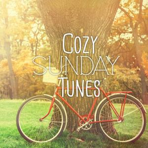 Cozy Sunday Tunes, Vol. 1 (Best of Weekend Lounge & Chill out Music)