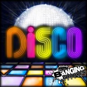 Disco House Will Never Die