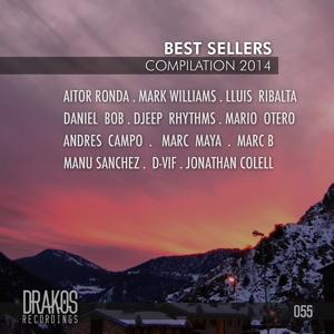 Best Sellers Compilation 2014