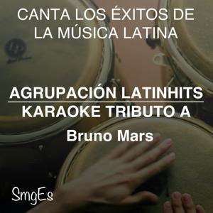 Instrumental Karaoke Series: Bruno Mars