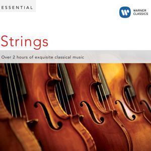Essential Strings