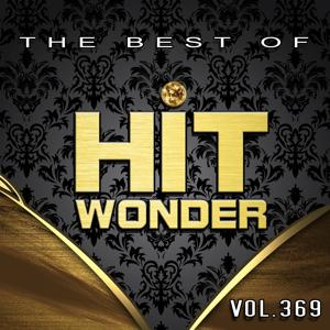 Hit Wonder: The Best Of, Vol. 369