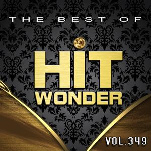 Hit Wonder: The Best Of, Vol. 349