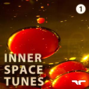 Inner Space Tunes, Vol. 1