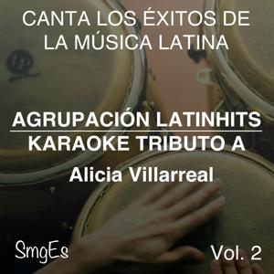 Instrumental Karaoke Series: Alicia Villarreal, Vol. 2