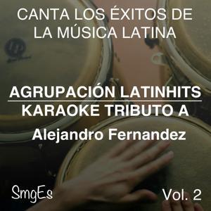 Instrumental Karaoke Series: Alejandro Fernandez, Vol. 2