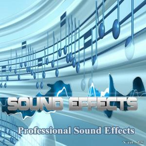 Professional Sound Effects, Vol. 25