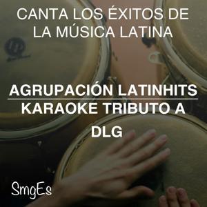 Instrumental Karaoke Series: DLG
