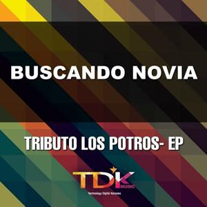 Buscando Novia (Karaoke Version) [In The Style Of Los Potros]