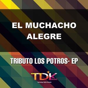 El Muchacho Alegre (Karaoke Version) [In The Style Of Los Potros]