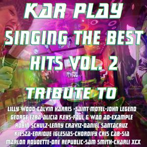 Sing the Best Hits, Vol. 2 (Instrumental Versions: Tribute to Lilly Wood and Various Artist)