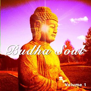 Budha Soul, Vol. 1 (Openminded Chill out & Meditation Tunes)